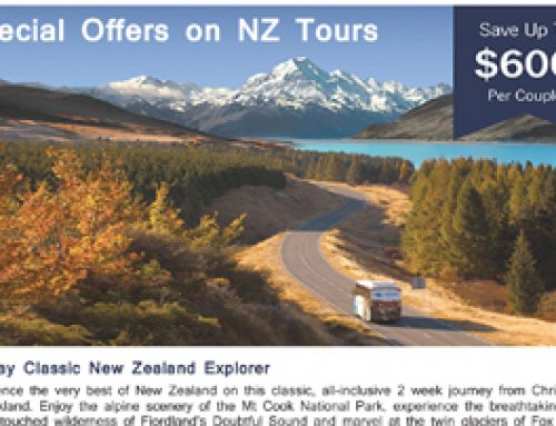 Special Offers on NZ Tours