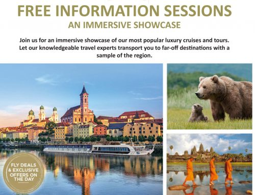 Free Information Sessions – An Immersive Showcase