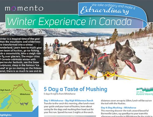 Momento Winter Experience in Canada