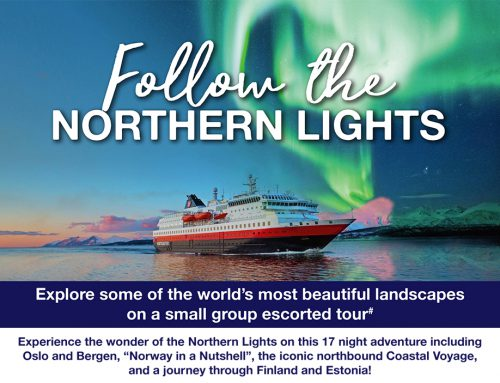 Follow the Northern Lights